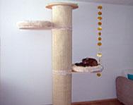 Katzenfreundin testet Kratzbaum Zooplus XXL
